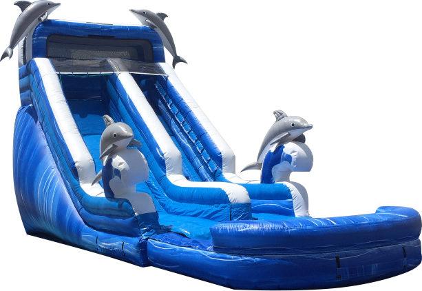 Dolphin Waterslide